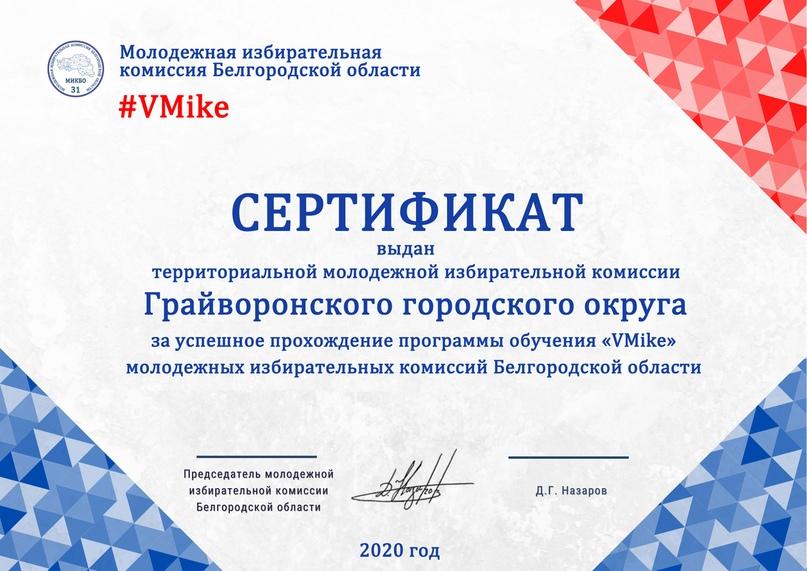 Итоги программы обучения молодежных избирательных комиссий Белгородской области «VMike», изображение №24