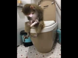 Милый, что ты там делаешь? 😁