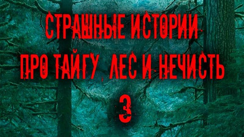 Страшные истории про тайгу лес и нечисть 3 Мистика Zvook Олег Ли