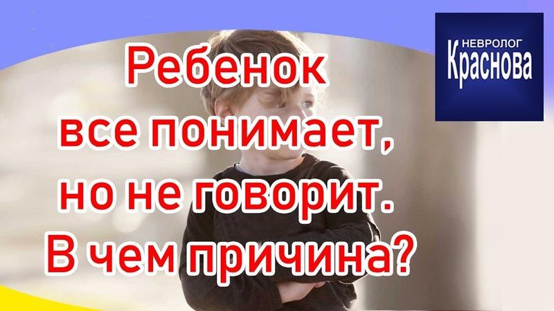 Ребенок все понимает но не говорит В чем причина Задержка речевого развития Доктор Краснова