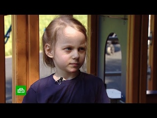 МГУ готов принять сдавшую ЕГЭ 8-летнюю девочку-вундеркинда