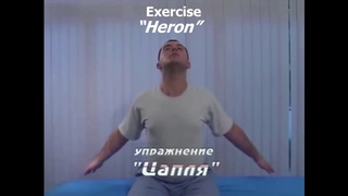 Neck tension and pain relief series (exercise) from from Dr. Shishonin