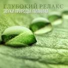 Обложка Нежная мелодия флейты - Instrumental Piano Academy