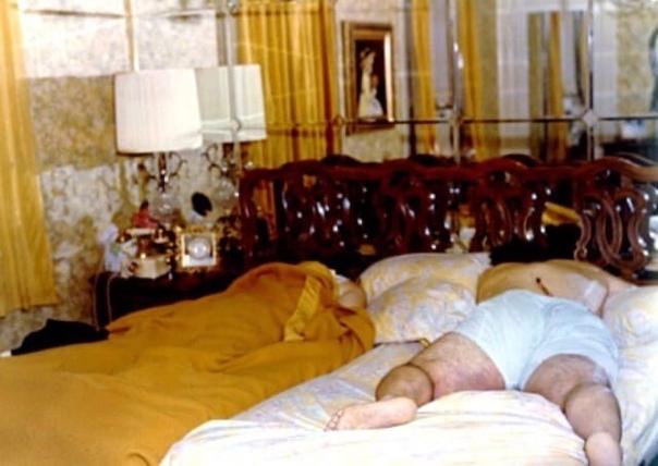 Ужас Амитивилля 13 ноября 1974 года, примерно в 3 часа ночи, Рональд Джозеф Дефео-младший взял 35-калиберную винтовку Marlin 336C и убил своего отца, мать, двух сестёр и двух братьев.История,
