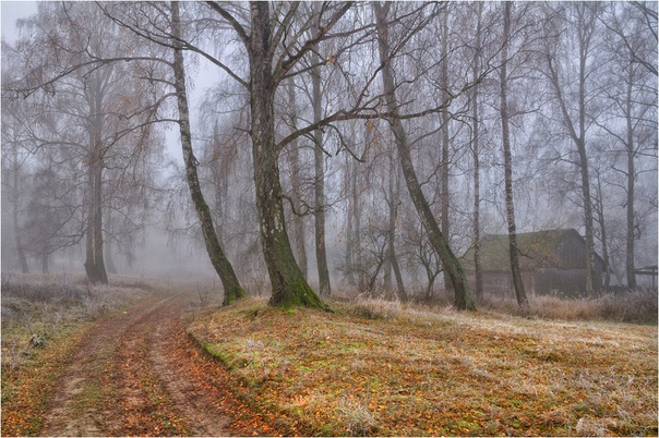Заблудившаяся осень