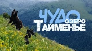 Чудо-озеро Тайменье /Горный Алтай 2021. Катунский заповедник (Lake Taimen /Mountain Altai) /Katunsky