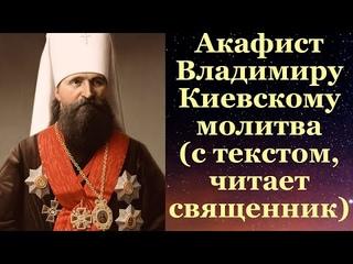 Акафист Владимиру Киевскому и Галицкому (Богоявленскому), с текстом, читает священник, молитва
