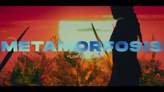 Flor de Rap - Metamorfosis (Video Oficial)