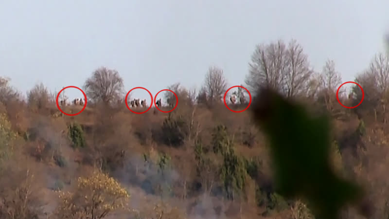 Уничтожение группы диверсантов ВС Азербайджана Эхо Карабаха