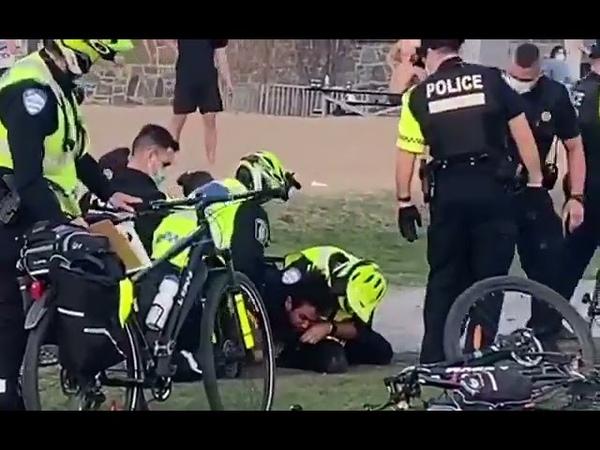 🔴 Viral Un policier névrosé tabasse un jeune homme immobile au parc Jeanne Mance à Montréal