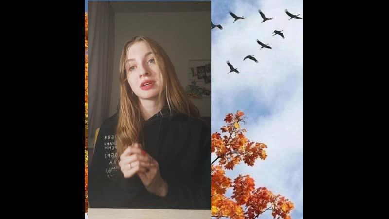 Анна Кривошеева Журавлик на полке исполняет автор.