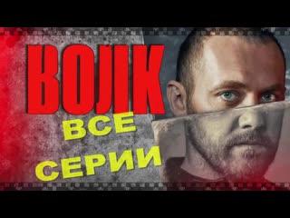 Сериал ВОЛК 2020. Смотрите серии российского детектива о реальной тайне 1943 года