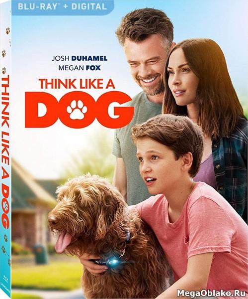 Думай как собака / Think Like a Dog (2020/BDRip/HDRip)