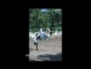 Опасный ниндзя в юбке