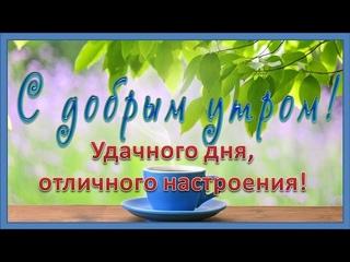 Доброго утра! Удачного дня, отличного настроения! Пусть утро будет добрым!