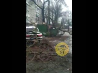 На Тамбовской 18 на машины упало старое дерево  Регион 61