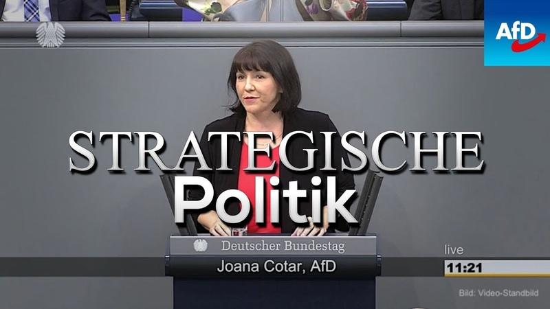 Joana Cotar AFD Manipulation des Wählers Bundestag 2019 NieMehrSPD Uploadfilter NieMehrCDU
