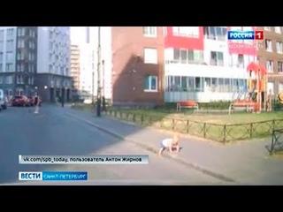 Годовалого малыша спасли из-под колес в Кудрово
