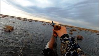 Весенняя охота на селезня в Казахстане. Первая охота на утку после запрета за 4 года. Открытие 2021