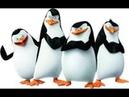 Пингвины из Мадагаскара 14 Серия 3 Сезон