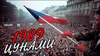 Цунами-1989: Прощай, Восточный блок [Как разваливался СССР]