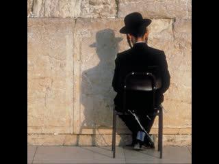 Карантин в Израиле: доносы, штрафы, безработица