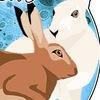 Центр реабилитации диких зайцев