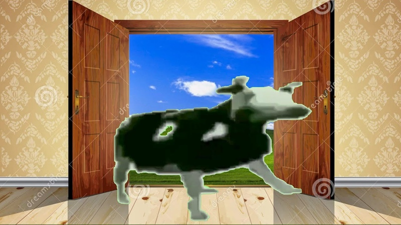POV Dancing Polish Cow breaks into your house
