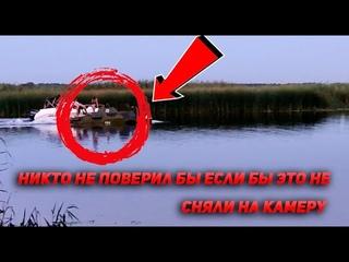 Никто не поверил бы если не сняли на видео. В шоке от того, что увидели на рыбалке на реке Воронеж