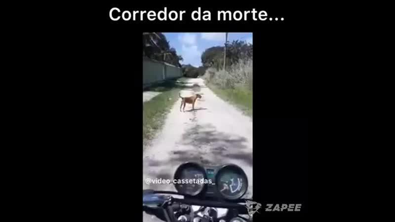 Deuschorros matando mototaxista