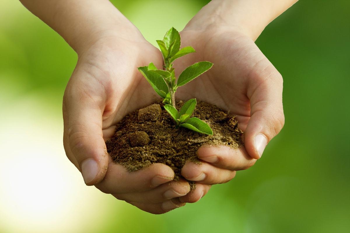 Национализм непременно включает в себя экологическое сознание