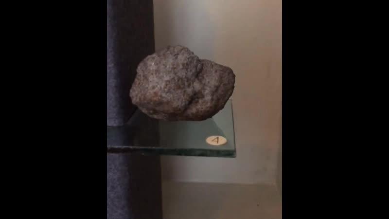 Рубрика Экспонат недели Метеориты 1