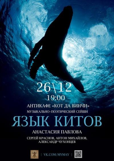 Человек сможет понимать язык китов - ФОКУС | 566x400