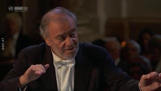 Wagner Siegfried Idyll - Münchner Philharmoniker & Valery Gergiev
