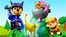 La Patrulla Canina rescata a un gatito. Juguetes Paw Patrol. Vídeos para niños