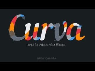 Curva Script  Premium After Effects Script | videohive