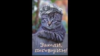 Юмор. Веселая музыкальная открытка для настроения.Позитив.Веселые животные.Приколы с животными