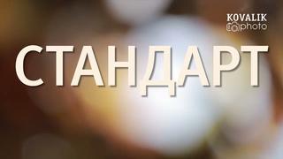 Выпускной альбом Стандарт
