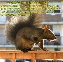 Персональный фотоальбом Константина Князева