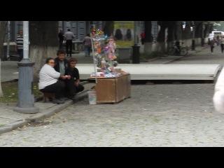 004_Харинама, Ратха-ятра, фестиваль Полтава(31.08.13) - 4 [Вамана Рупа дас]