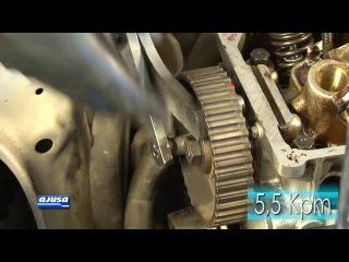 Camshaft and hydraulic lifters / Árbol de levas y taqués hidráulicos FORD FIESTA 1.4 FU .