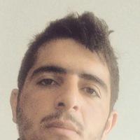 Peyman Shamzini
