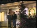 Вдова Бланко | La Viuda de Blanco 1996 Серия 135