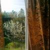 Деревок-Столярное Производство