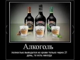 С днём рождения, ВОДОЧКА! - ну, а мы пьём для души