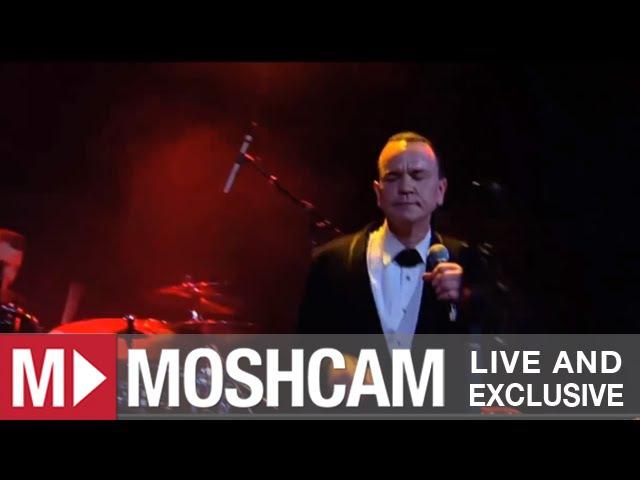 Royal Crown Revue Hey Pachuco Live in Sydney Moshcam