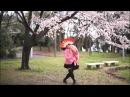 MIRRORED VER 【足太ぺんた】Senbon Sakura 千本桜 踊ってみた