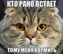 Фотоальбом человека Марии Тхилаишвили