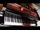 Mumford and Sons - Little Lion Man Benedikt Waldheuer Piano Cover