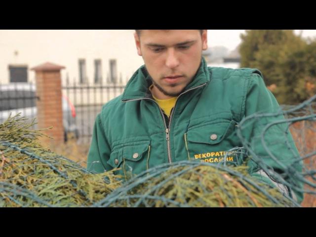 How to make topiary Каркас для топиари каркас слона